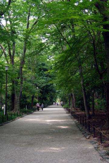 20100731-03.jpg