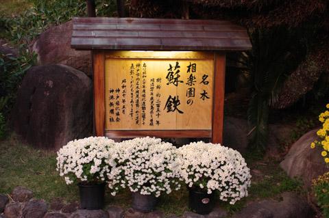 20111112-11.jpg